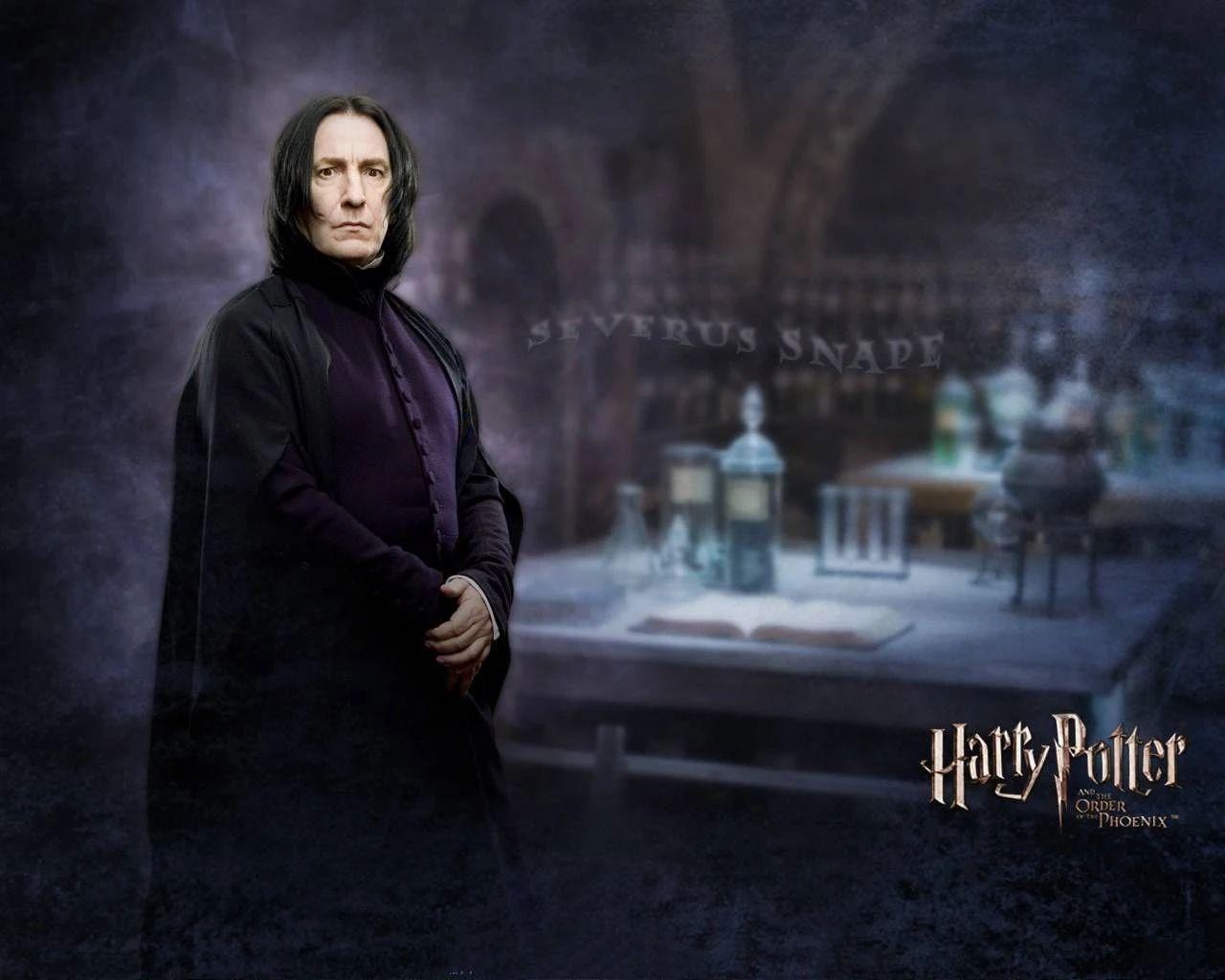 2020哈利波特環球魔法節 ‖ 來宿松體驗霍格沃茲的奇妙之旅